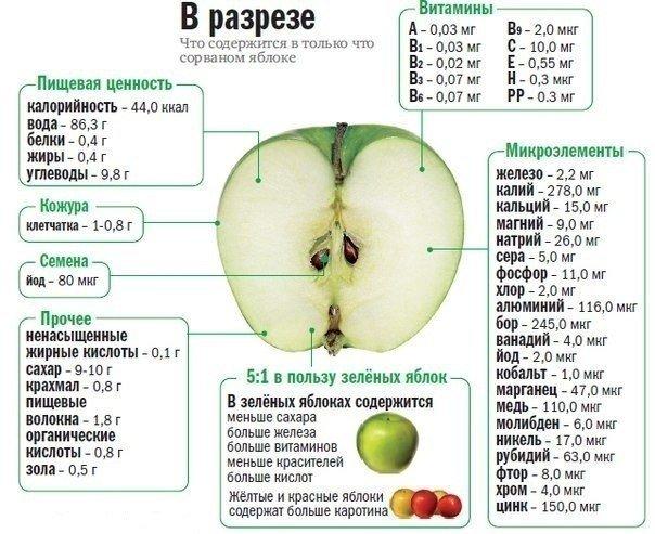 Свойства яблока